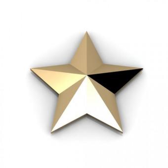 Звезда на заказ. Модель STL773